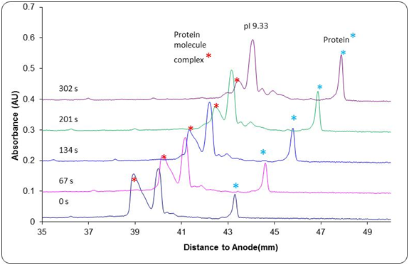 method development for protein detection Introduction different detection methods are used to visualize the nucleic acids and specific proteins transferred to membrane support southern and northern blotting involves the use of radioactive probes and the detection involves exposure to x-ray or autoradiography film in the dark.
