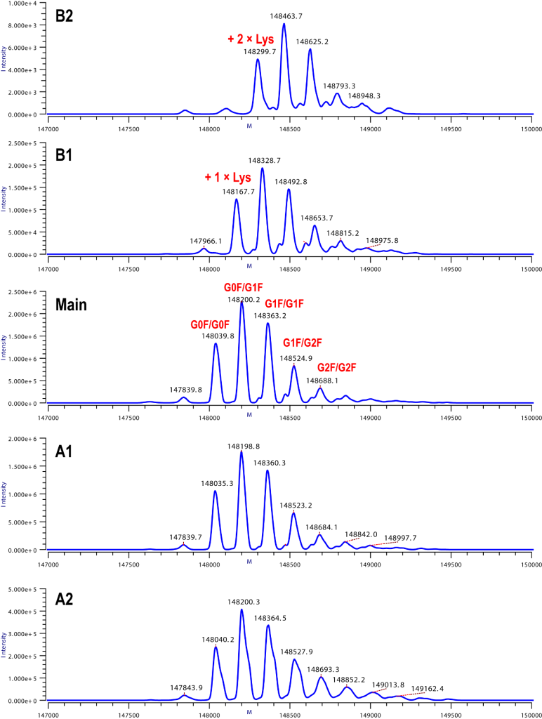 Figure 2. Deconvoluted MS Spectra of NITSmAb Charge Isomers from On-Line iCIEF-MS